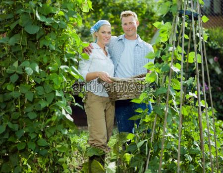 young couple between bean plants