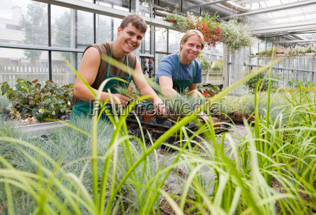 two men caring for plants