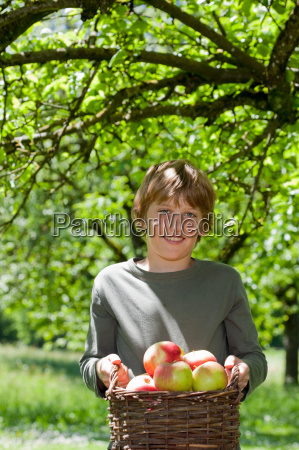 boy carrying basket with apples