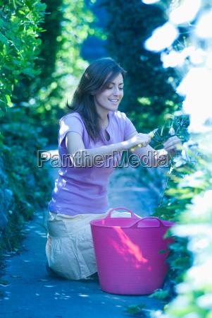 woman pruning plants in garden