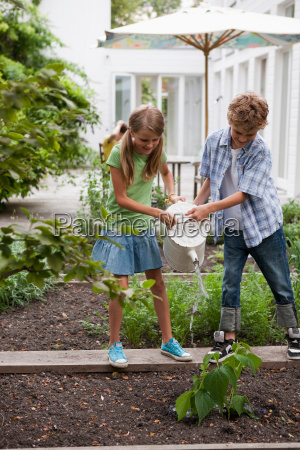 boy and girl watering plants