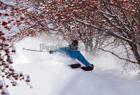 cross country skier on snowy terrain