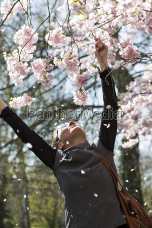 mature woman reaching for cherry blossoms