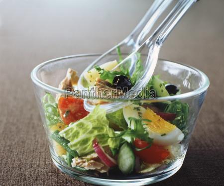salad olives tuna tomatoes cucumber egg