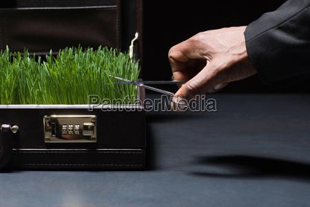 person cutting grass in briefcase