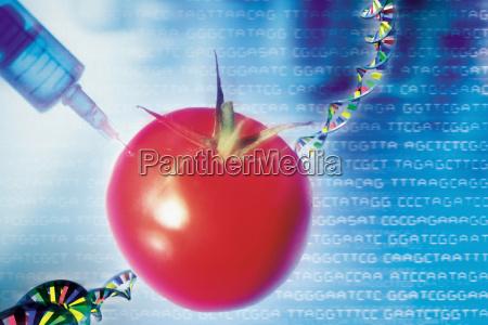 experiment industrie wissenschaft technologie niemand paradeiser
