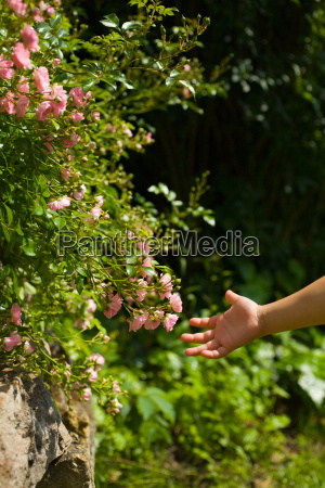 a girls hand and flowers