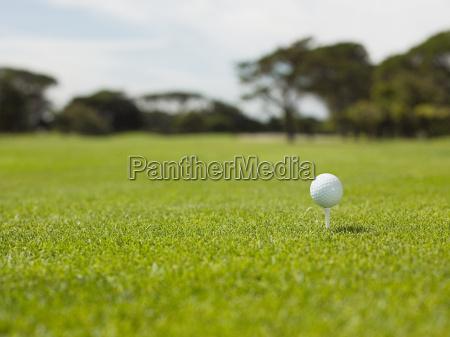 golf ball on golf course close