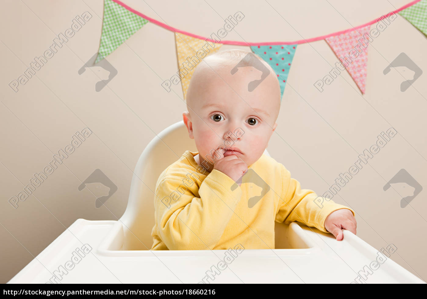baby, boy, , portrait - 18660216