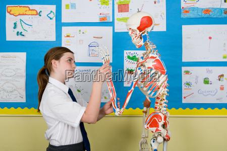 maedchen mit skelett