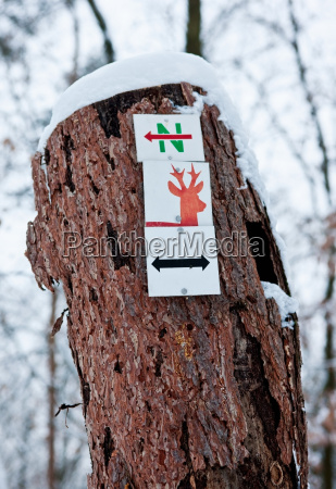 sign on tree trunk