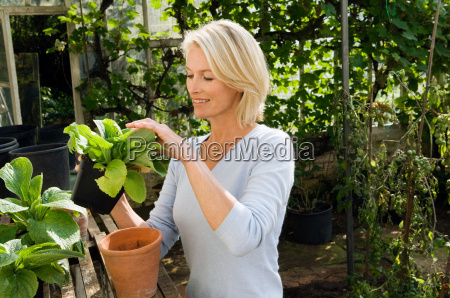 woman in greenhouse with plants