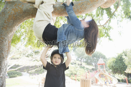upside down mother wrapped around tree