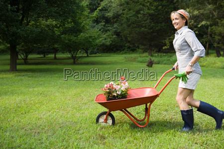 woman with wheelbarrow of plants