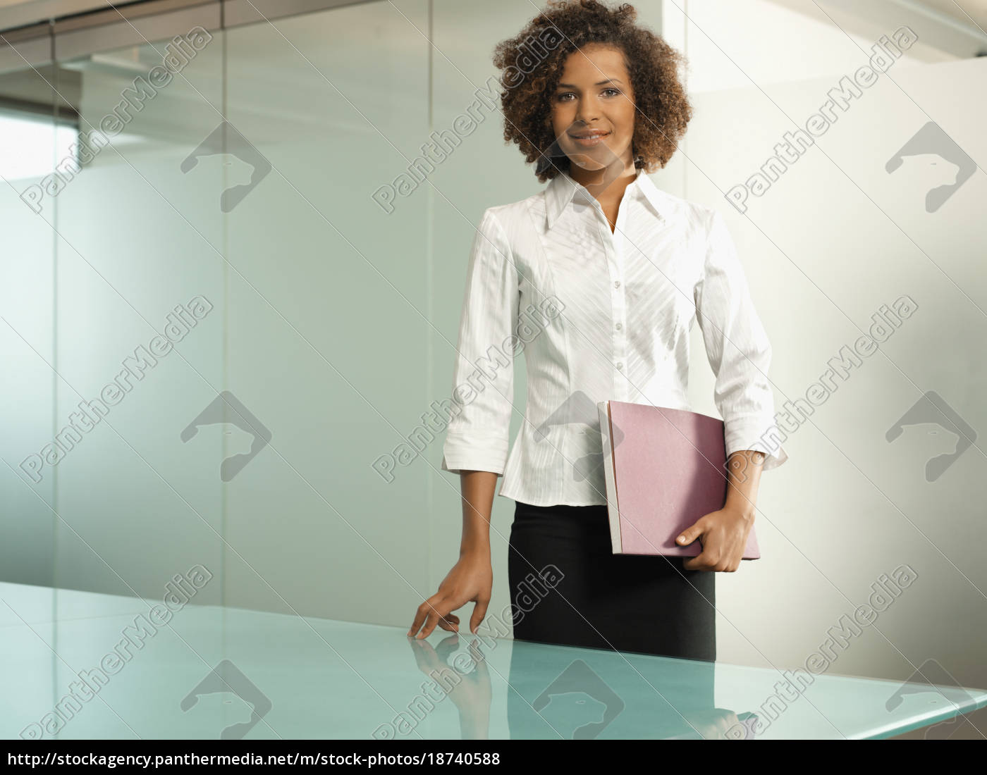 businesswoman, holding, a, folder - 18740588