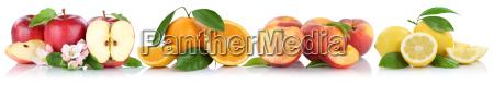 fruit apple orange peach apples oranges