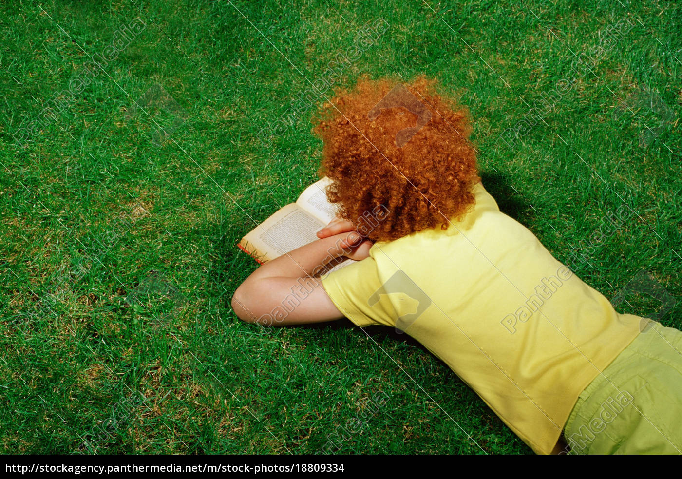 girl, lying, on, the, grass, reading - 18809334