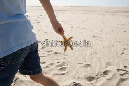 boy holding starfish walking on beach