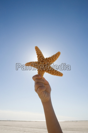 boy holding starfish against sky close