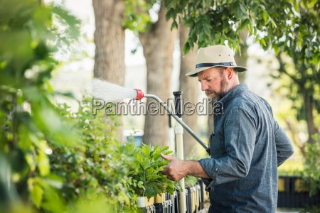 scientist spraying plants at plant growth