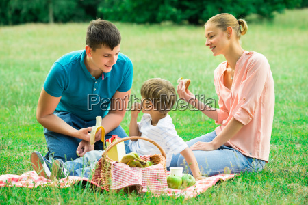 familie mit picknick im park