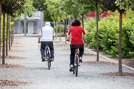 paar radfahren in den park
