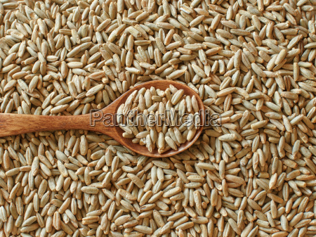 dry raw rye grain with a