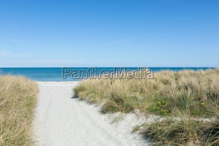 weg durch den sand zum strand