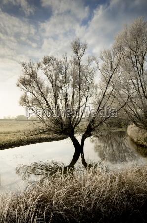 fahrt reisen baum winter reflexion europa