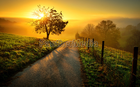idyllic landscape at sunrise with path