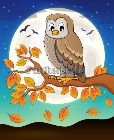 owl topic image 6