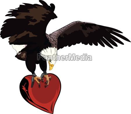 eagle herz