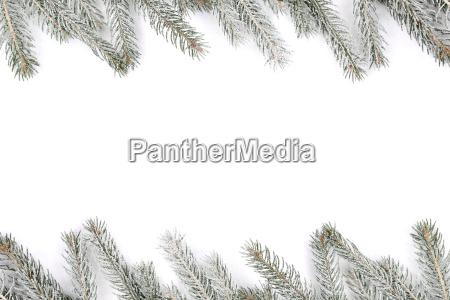 christmas decoration christmas decoration fir snow