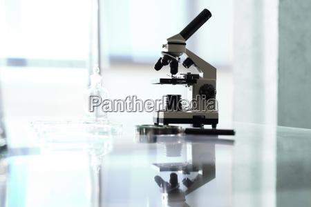 labor biotechnologie mikroskop