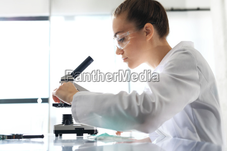 biotechnologist examines samples under the microscope