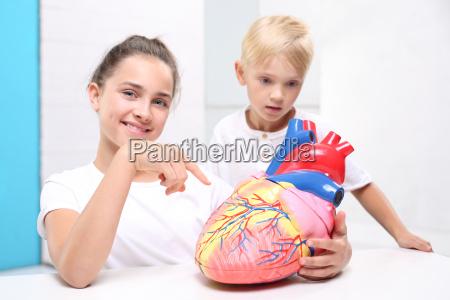 die anatomie lektion aufbaumann kinder sehen