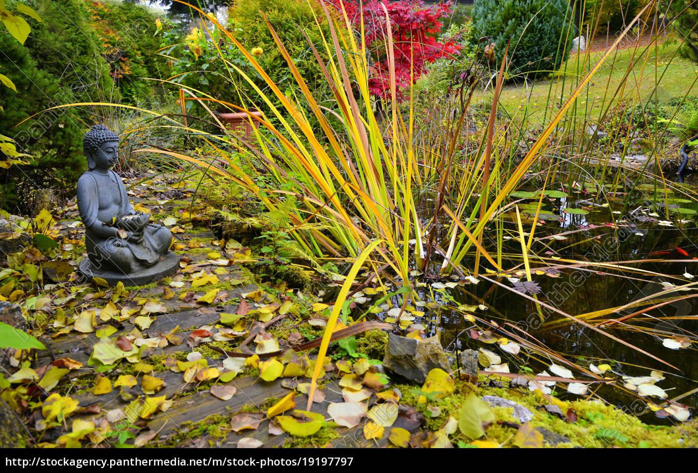 Lizenzfreies Bild 19197797 Bunter Herbst Im Garten An Einem Teich Mit Einem Buddha