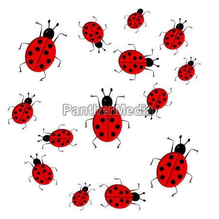 cute colorful ladybugs clip art