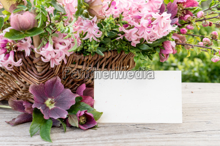 basket with hyacinths hellebores and copy