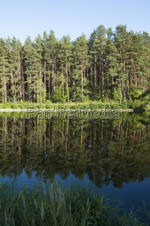germany brandenburg canal and water reflection