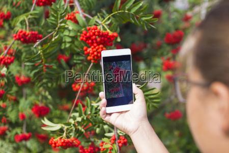 teenager maedchen mit telefon und roten