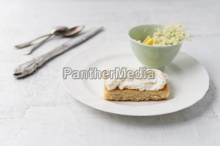 zitronenkuchen mit aelterer quarkcreme