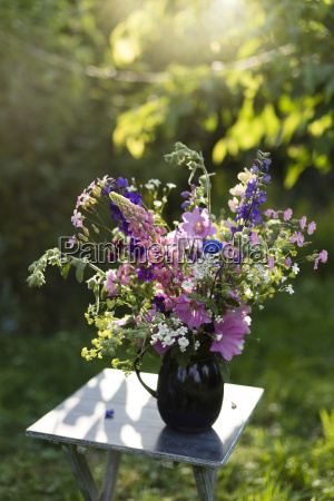 hocker garten blume pflanze gewaechs sommer
