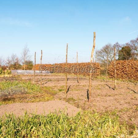 landwirtschaftlich anbau wachsen landbau bodenbearbeitung bebauung