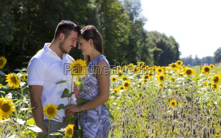 glueckliches junges paar im sonnenblumenfeld verlobung