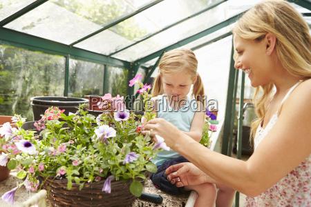 mutter und tochter wachsende pflanzen im