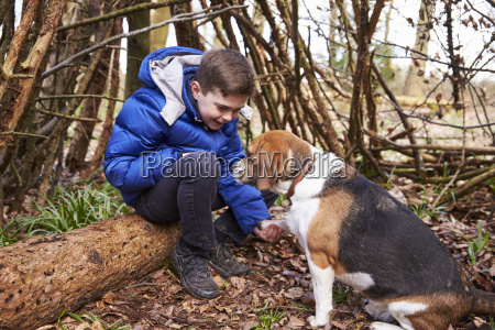 boy playing with pet dog under