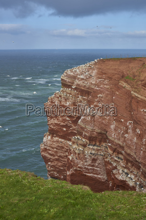 coastal view of sea stack in