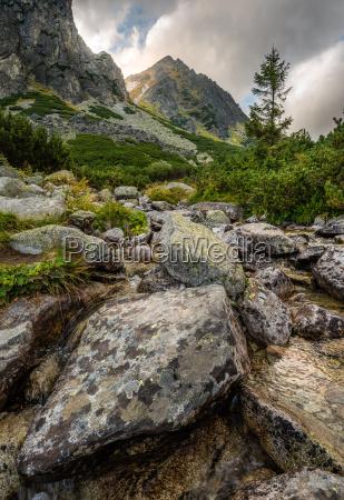 berglandschaft mit einem creek