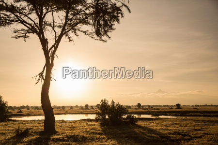 waterhole at sunset in wildlife reserve